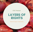 Layers of rights podcast logo